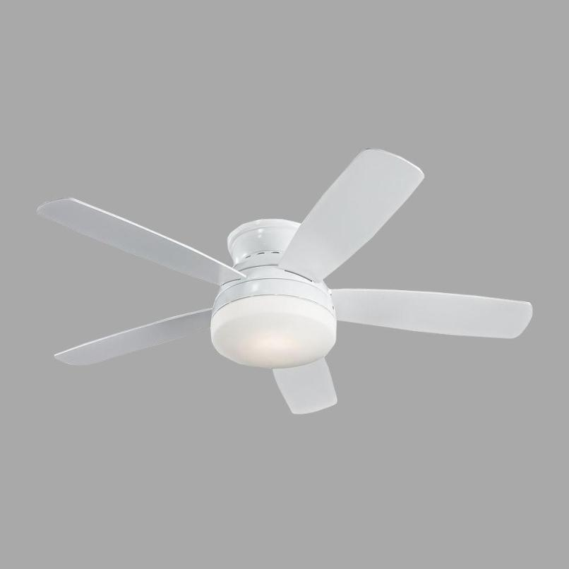 Zenta Ceiling Fan Review Ideas Little Max
