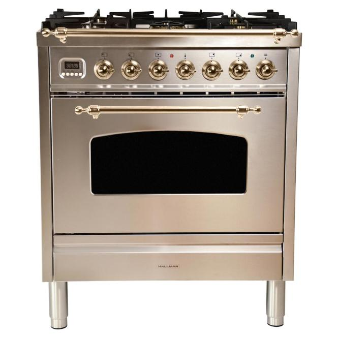 Single Oven Italian Gas Range With True
