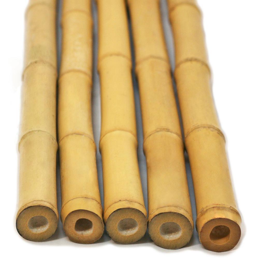 H Bamboo Poles Natural  Piece Bundled