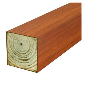 Woodguard 4 In X 4 In X 8 Ft 2 DF Polymer Coated