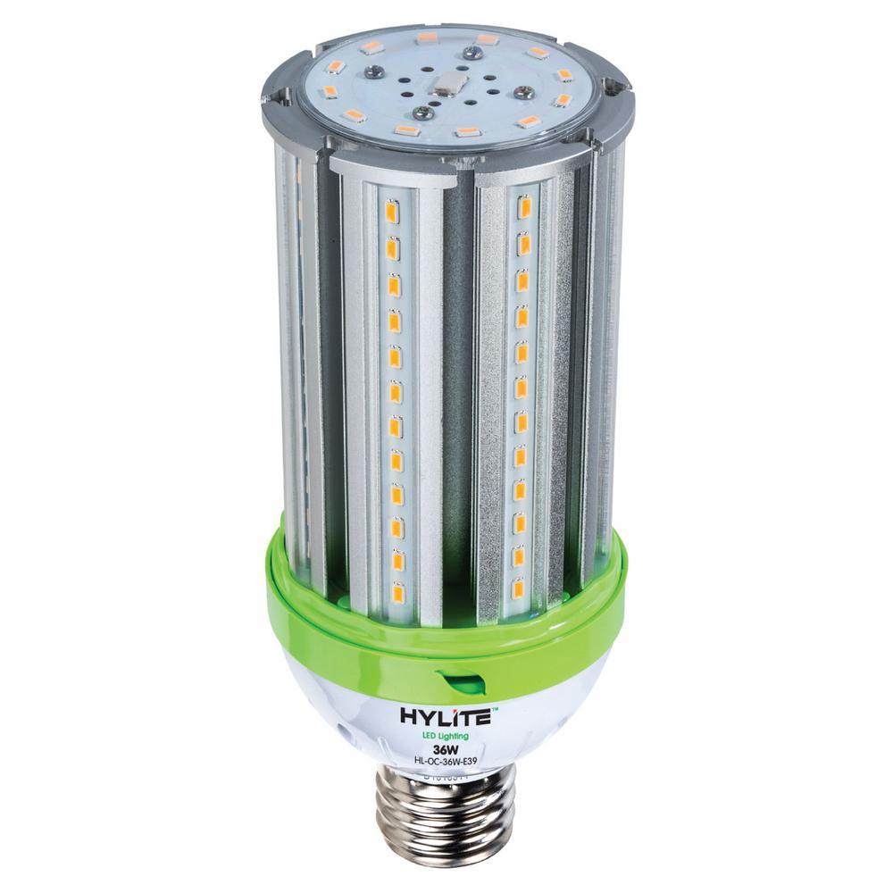 K Lite Light Bulbs