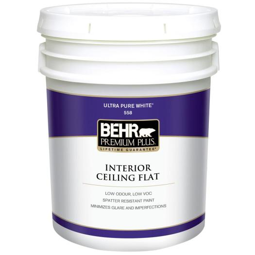 White Flat Ceiling Interior Paint 55805 The
