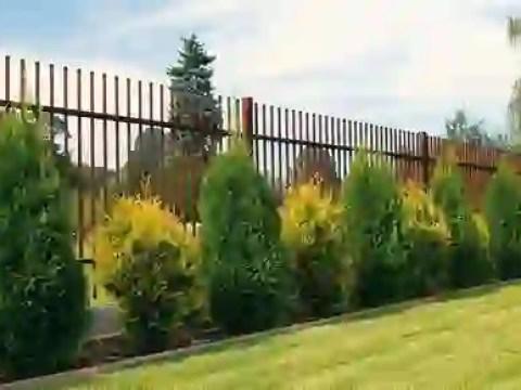 gestaltungsideen grundstücksgrenze gartenzäune, mauern, hecken:  grundstücksgrenzen