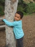 2009-02-24-Treehugger1.JPG