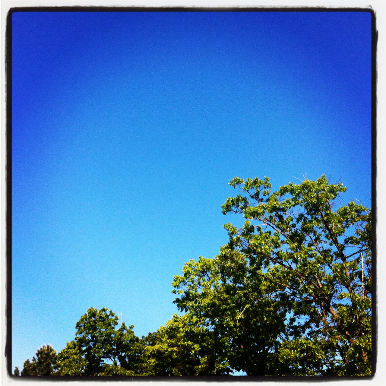 2012-08-16-BlueSkiesAmyNeumann.jpg