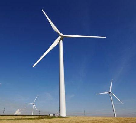 2012-11-05-green1.jpg