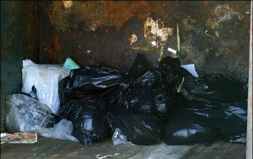 2013-03-29-dumpster.jpg