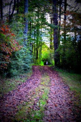 2014-03-27-path.farm.girl.JPG