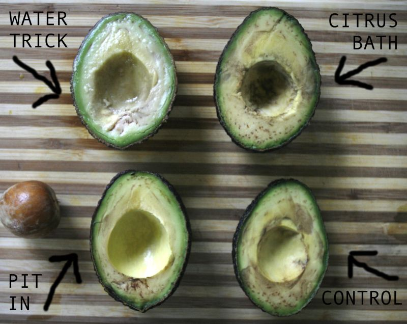 Image result for do you know if an avocado
