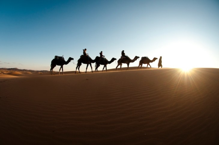 Image result for morocco photography