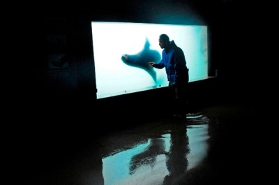 A New New York Aquarium | HuffPost