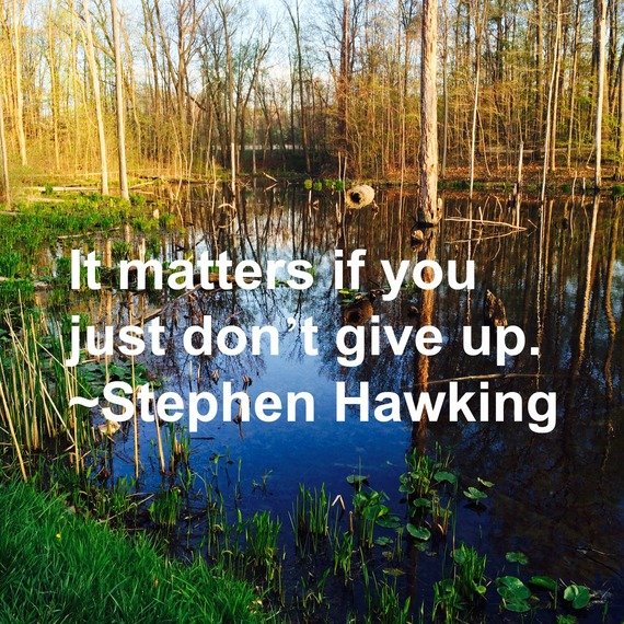 """It matters if you just don't give up."" ~ Stephen Hawking #quote http://charityideasblog.com A Dozen #Inspiring Quotes for an Insightful 2015"