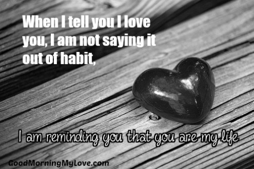 35 Cute Love Quotes for Him From the Heart   HuffPost 2015 11 04 1446641808 2030170 loveyouquotesforhim jpg