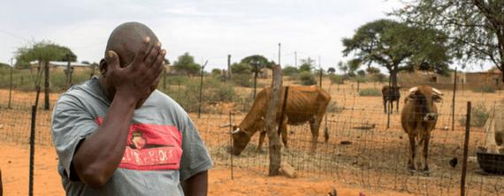 2016-01-06-1452048088-7711461-cattlefarmerinSouthAfricadroughtdec2015CreditJoaoSilvaattheNewYorkTimesccr310.png