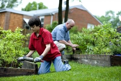 2016-06-07-1465326950-2616079-gardeningdad.jpg