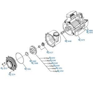 Waterway Executive 56 Spa Pump | 2 Speed 20Hp
