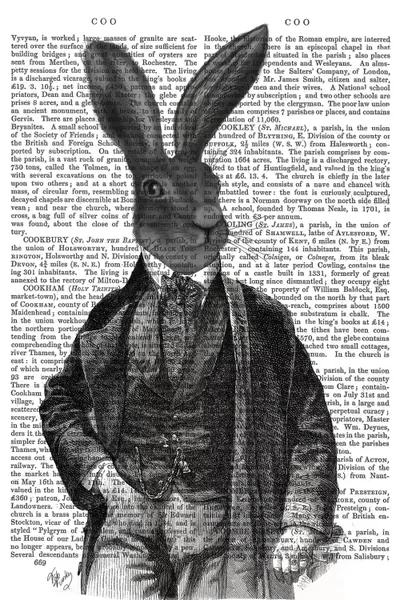 Victorian Rabbit Gent I Canvas Wall Art By Fab Funky ICanvas