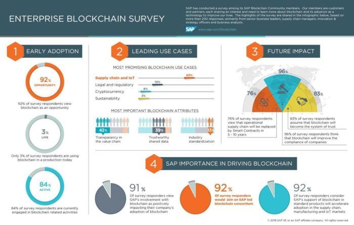 blockchain survey infographic