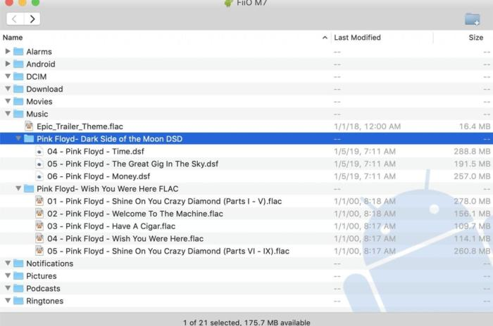 The Fiio's internal storage couldn't store two complete hi-res albums: DSD version of Pink Floyd's D