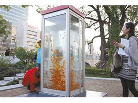 電話亭魚缸