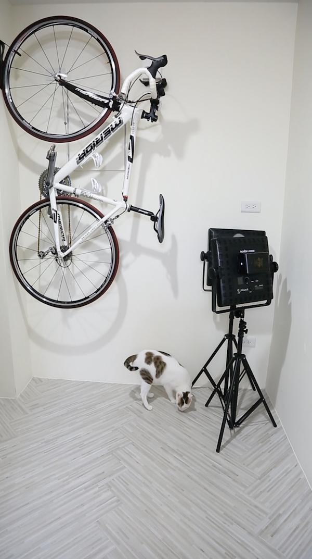 工作室的角落,貓與單車