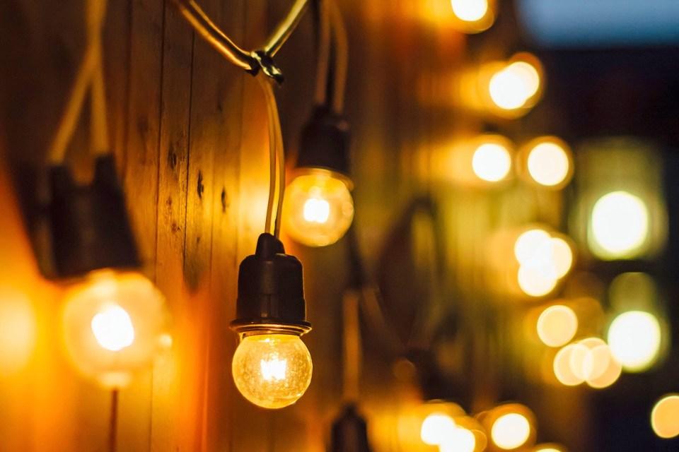 https www gardenersworld com plants six of the best garden lighting ideas