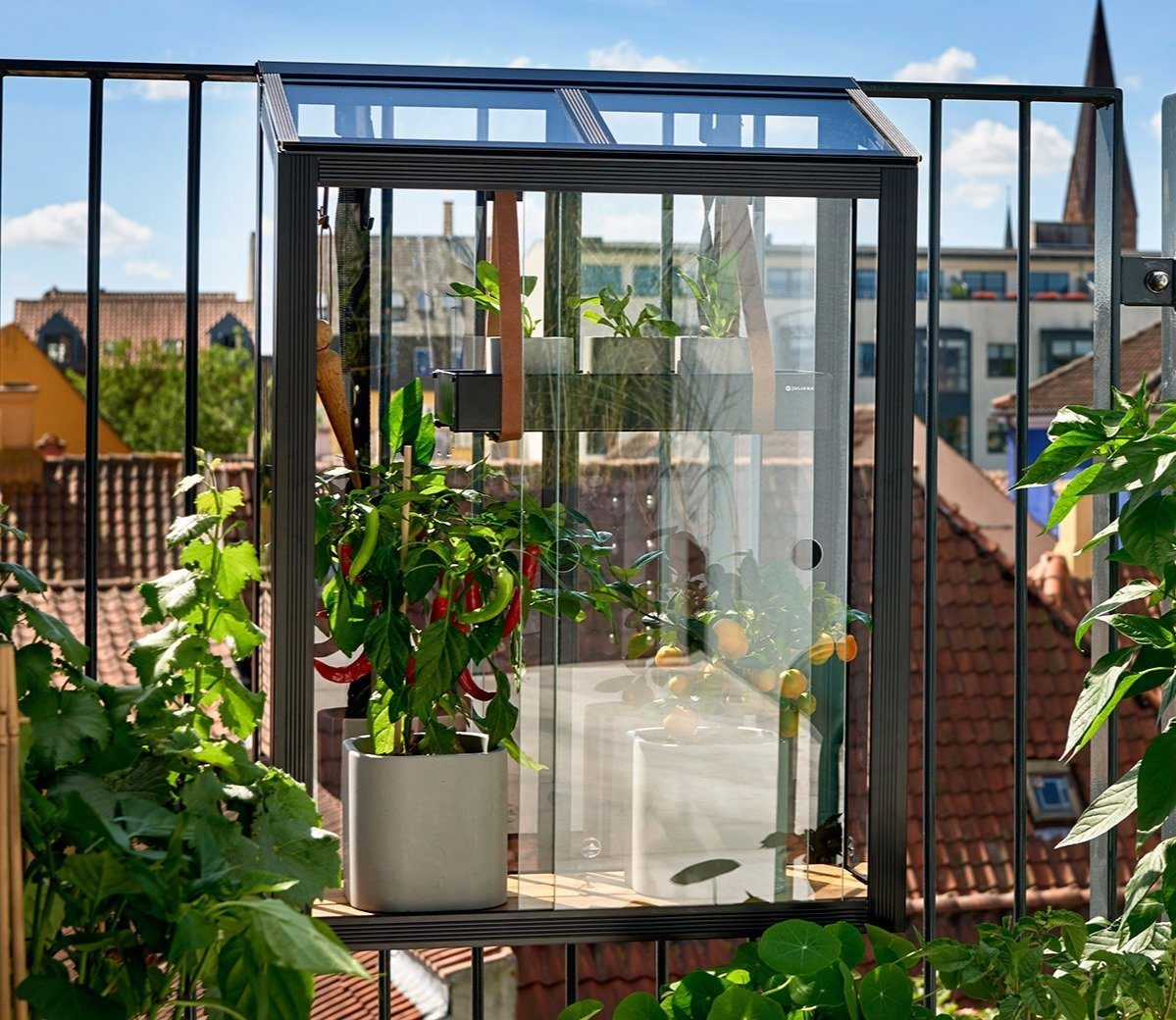 Balcony Garden Ideas Gardens Illustrated