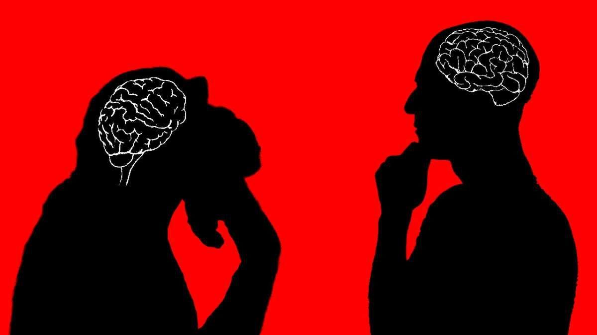 brain battle cefe0bb