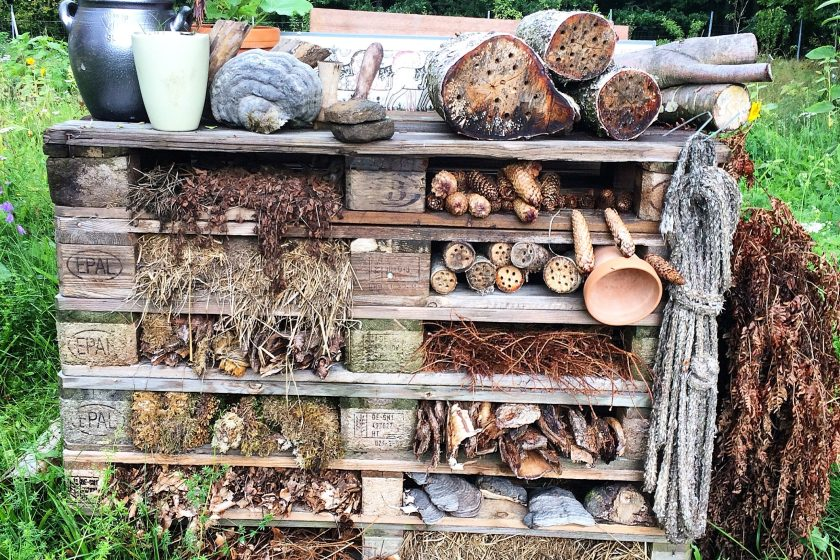 Insect hotel at Stedsans in the Woods, Sweden