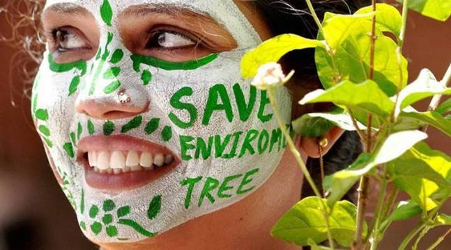 environment, education, EVS, Environmental studies, schools, India schools, news, latest news, national news, India news,