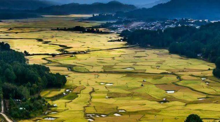 Ziro valley in Arunachal Pradesh