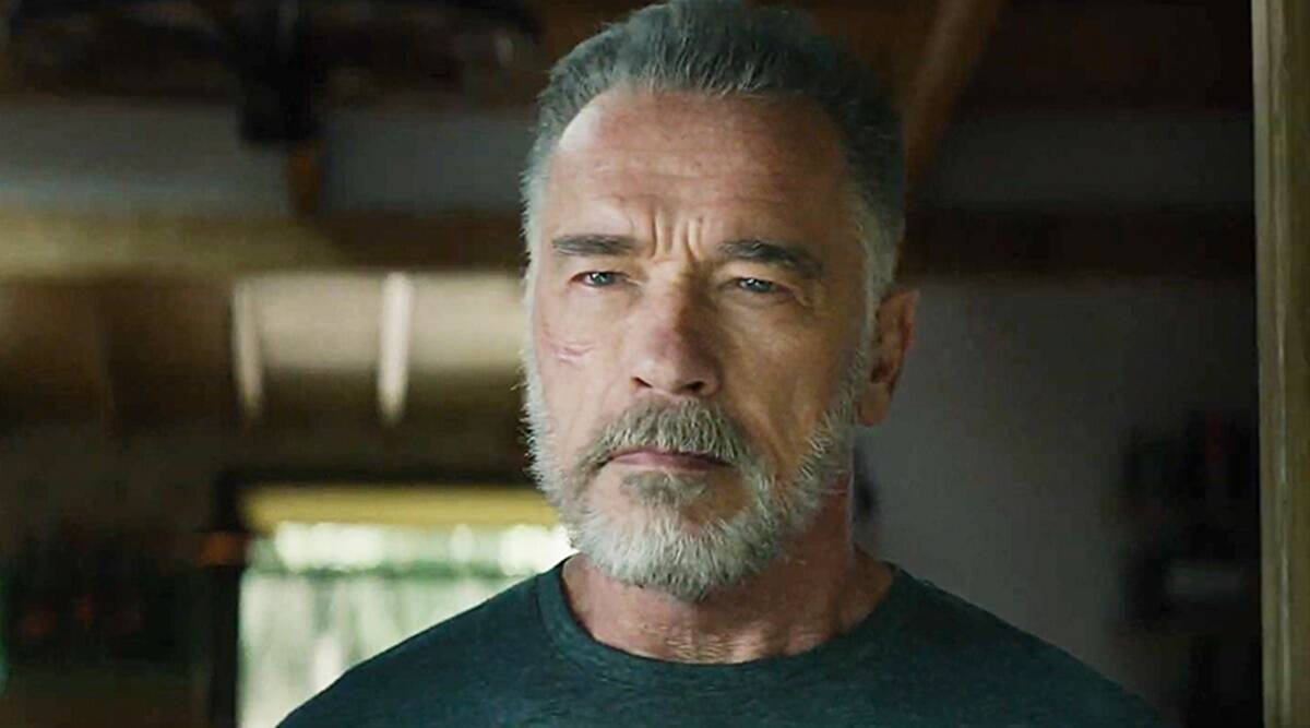 Arnold Schwarzenegger to star in spy adventure series