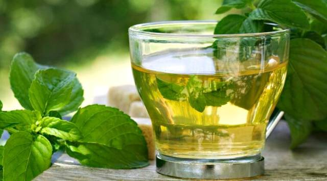 green tea, healthy drinks, green tea benefits, is green tea healthy or bad, PTI report on green tea, indian express green tea good or bad, benefits of green tea