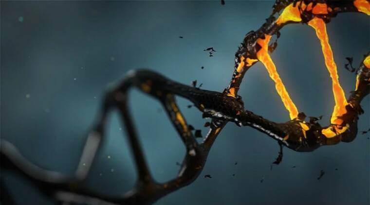dna, west african dna, dna study west africa, ghost ancestry, extinct human ancestors, ghost lineage