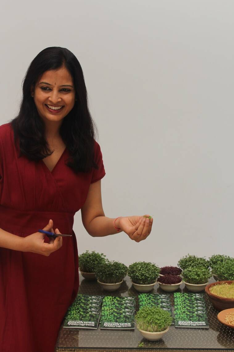 microgreens, how to grow microgreens, what are microgreens, indianexpress.com, microgreen types, deficiencies, nutritient deficiencies, micronutrient deficiencies, microgreens how to grow, indianexpress.com, indianexpress, superfoods, what are superfoods, immunity, pandemic, how to grow superfoods at home, pandemic and superfoods,