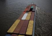 Vessel Screening