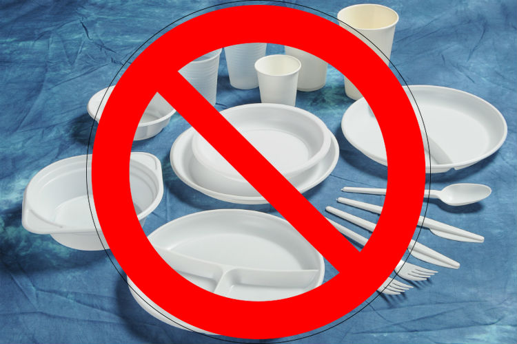 Kerala May Not Be Able To Use Plastic Plates At Weddings