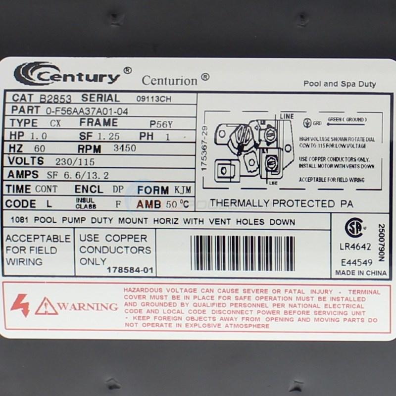 Century Centurion Pool Pump Wiring Diagram - Somurich.com