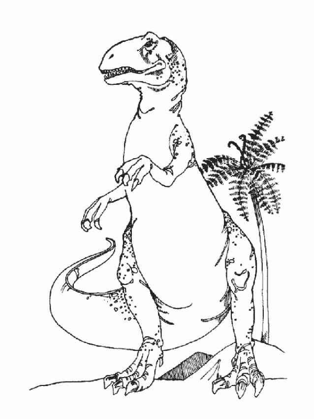 Coloriage Dinosaure Carnivore.T Rex Coloring Page Jurassic World Jurassic Park Builder