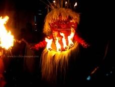 Pulli Bhagavathy Theyyam
