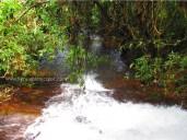 Kanayi Kanam Water flowing on to the lake