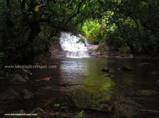 Kanayi Kanam Main Water Fall