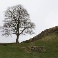 The fascinating history of Hadrian's Wall; Stuart Forster; Khaleej Times