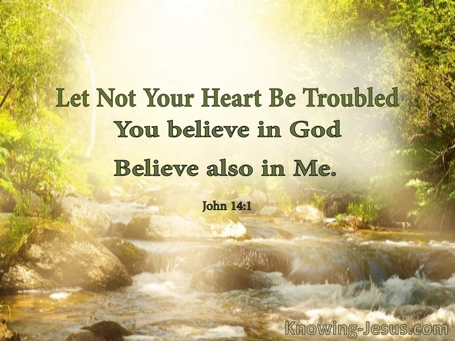 Image result for let not your heart be troubled
