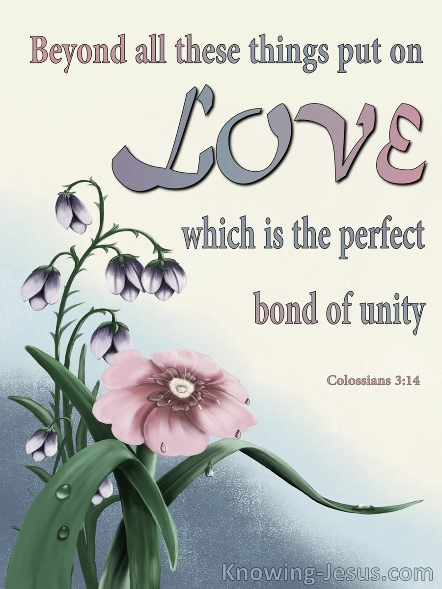 Colossians 314 Put On Love The Perfect Bond Of Unity Gray