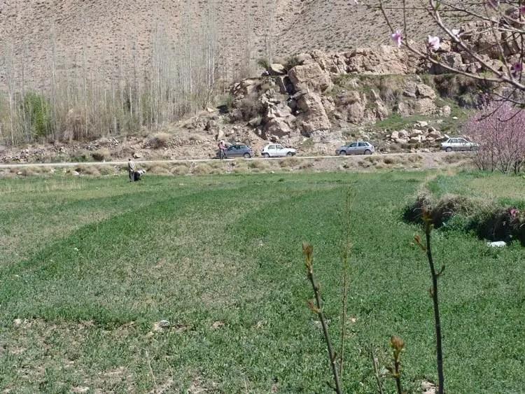 کوهپایه کرمان