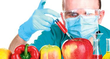 genetski modifikovana hrana, GMO, GMO hrana, genetski inžinjering,