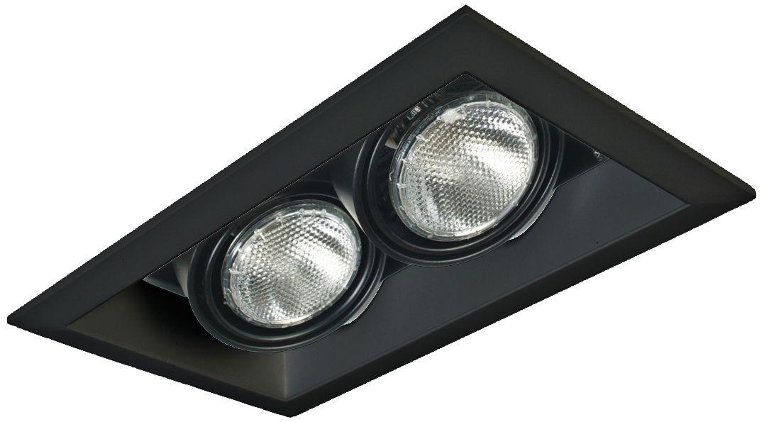 eurofase black double par 20 recessed light