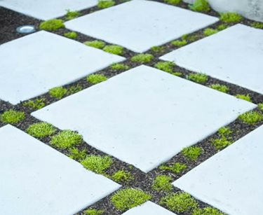 oversized concrete pavers landscaping