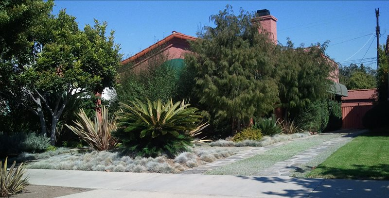 Front Garden Landscape Ideas